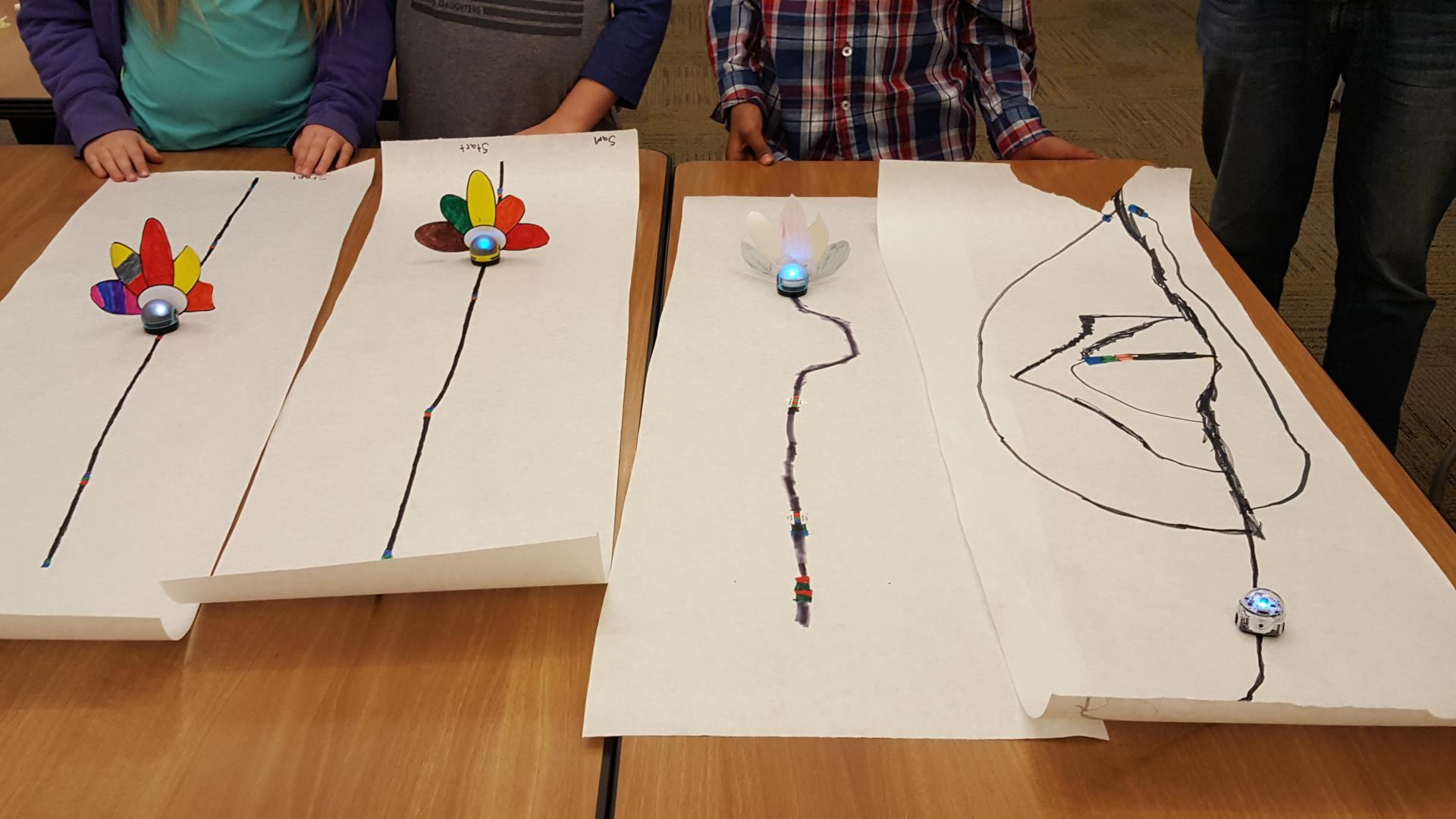 Ozobots with turkey tails race to the finish line